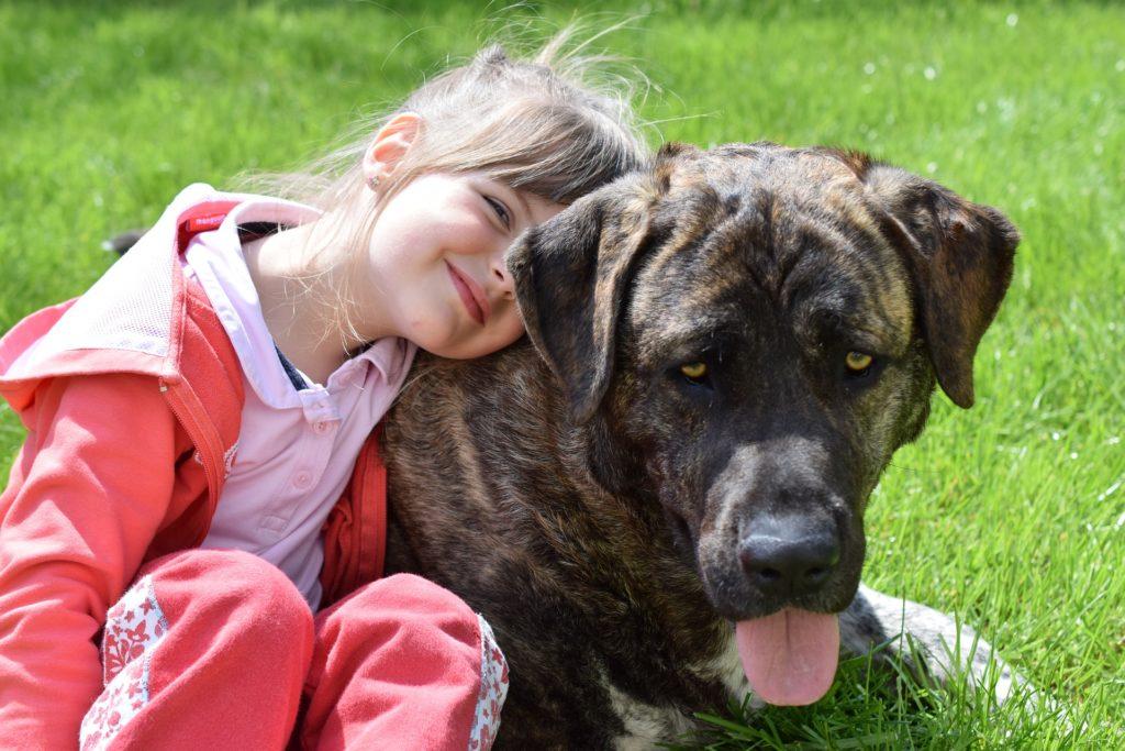 Marien Apotheke Hund und Kind